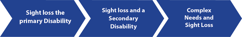 Graphic: children with sight loss and additional disabilities